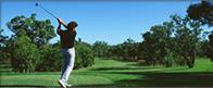 ゴルフ・送迎の画像
